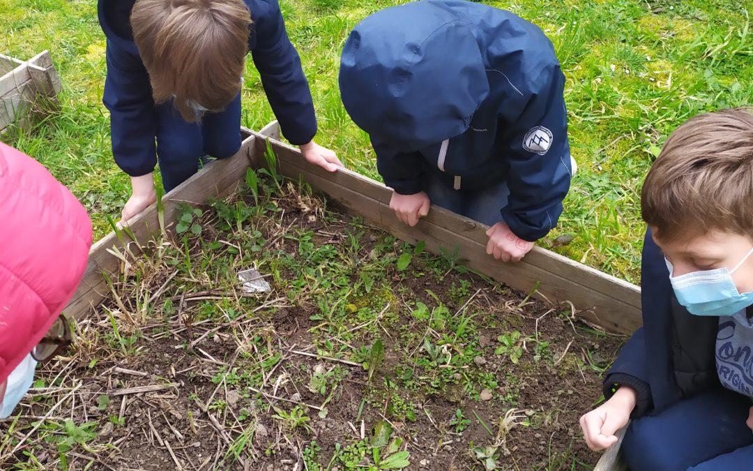 Les CE1 découvrent les petites bêtes du jardin